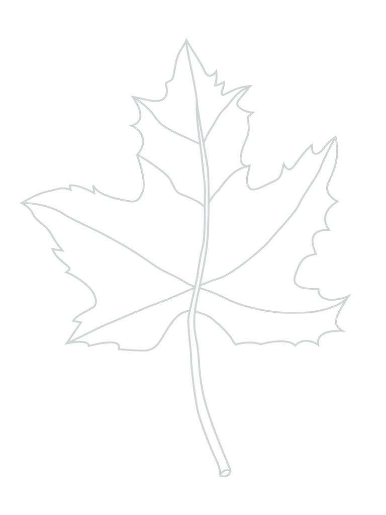 Sample Leaf Template