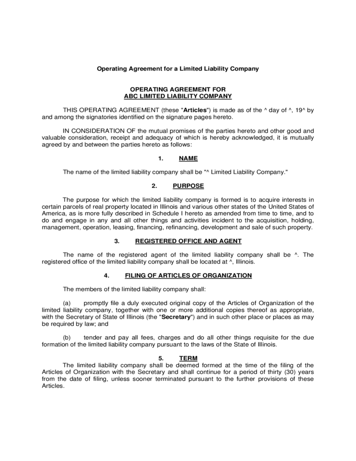 Operating Agreement Example For Llcs Free Download