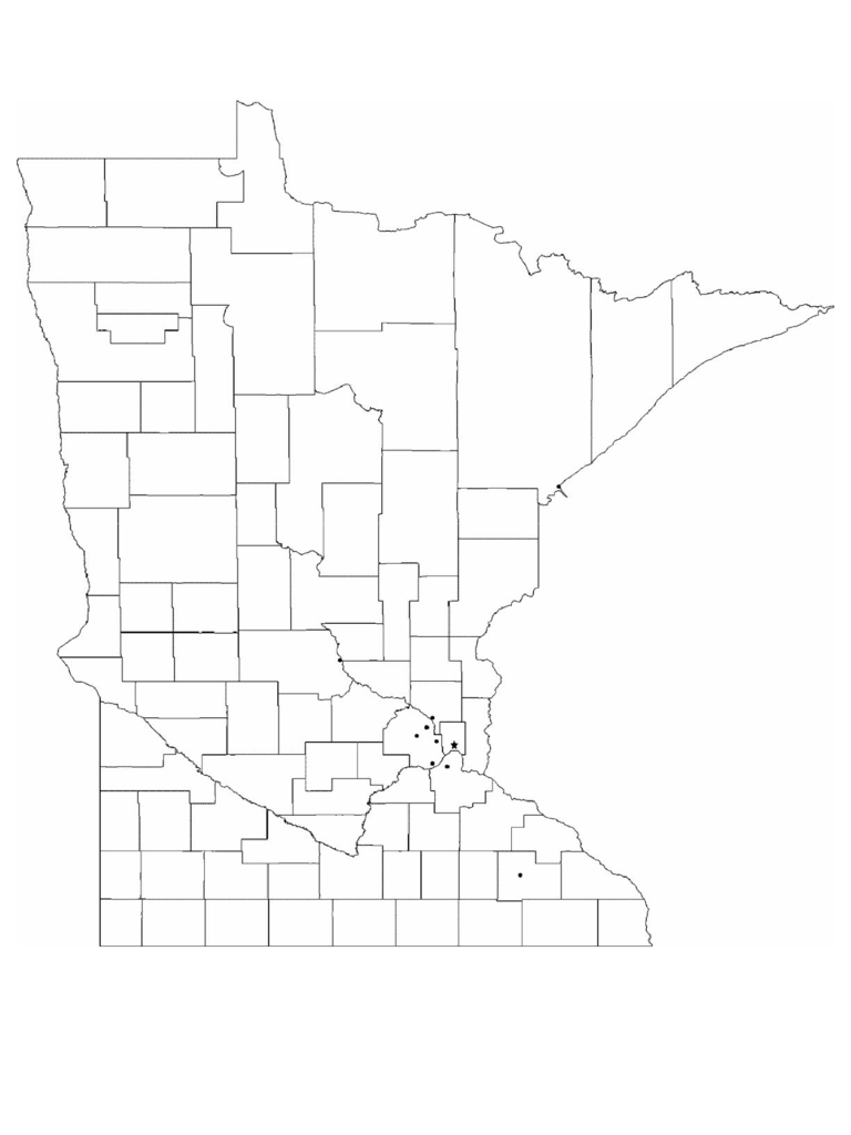 photograph about Minnesota County Map Printable named Minnesota Map Template - 8 Absolutely free Templates in just PDF, Term