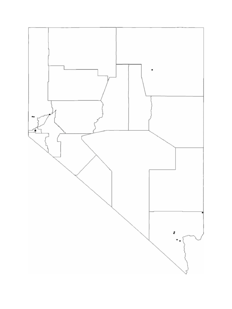 Blank Nevada City Map