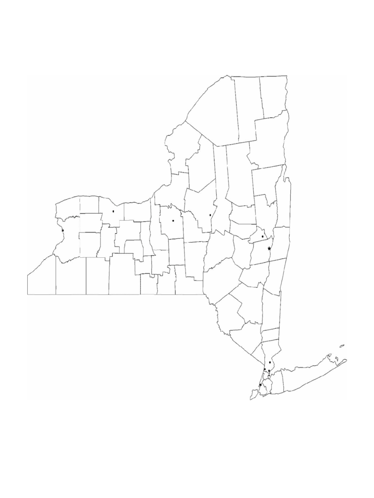Blank New York City Map
