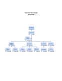 Non-Profit Organizational Chart Example Free Download