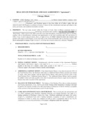 Real Estate Purchase and Sale Agreement - Illinois