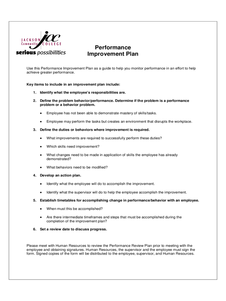 Performance Improvement Plan Sample 2 Free Templates In