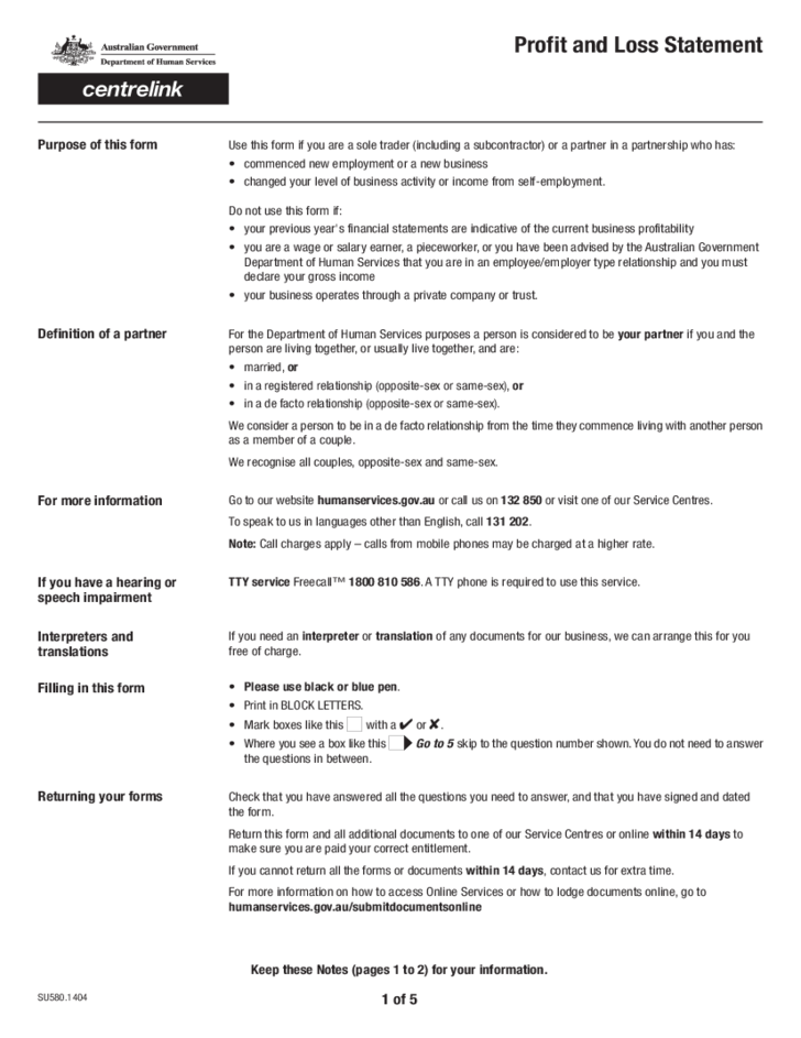 profit and loss statement sample form free download