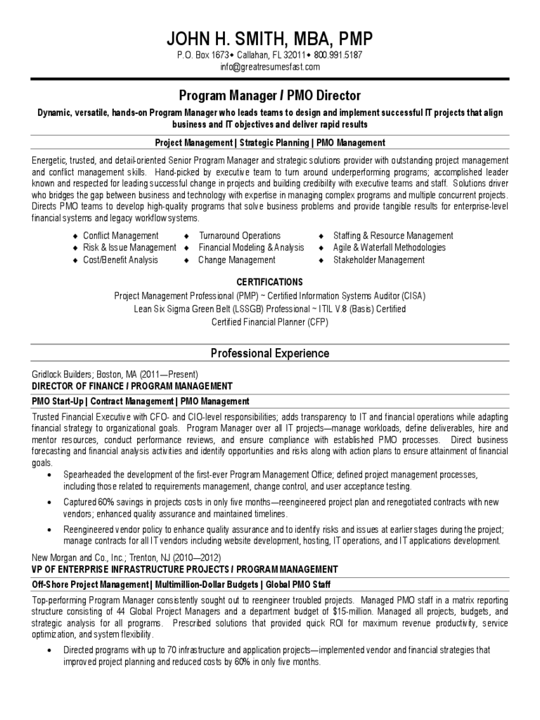 Basic Project Manager CV Template