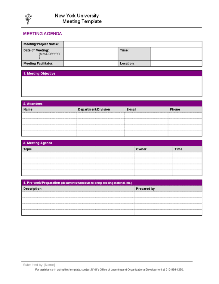 Project Meeting Minutes Template - New York