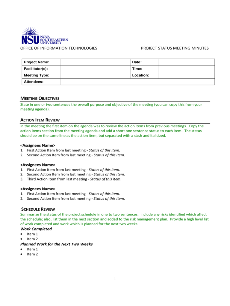 Project Status Meeting Minutes Template