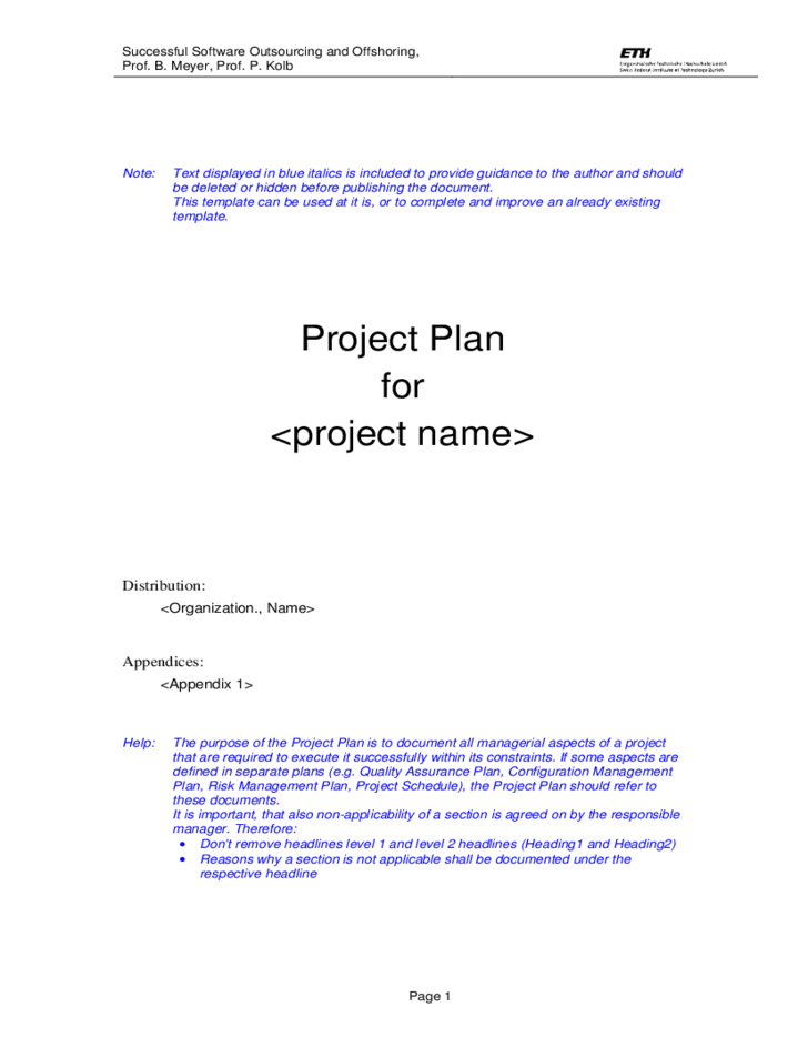 Template Project Plan