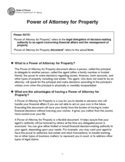 Power of Attorney for Property - Illinois Free Download