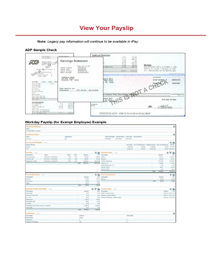 View Your Pay Slip - Carnegie Mellon University Free Download