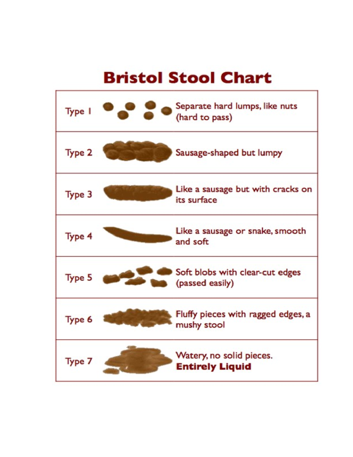 Stool Color Guide And Chart Free Download