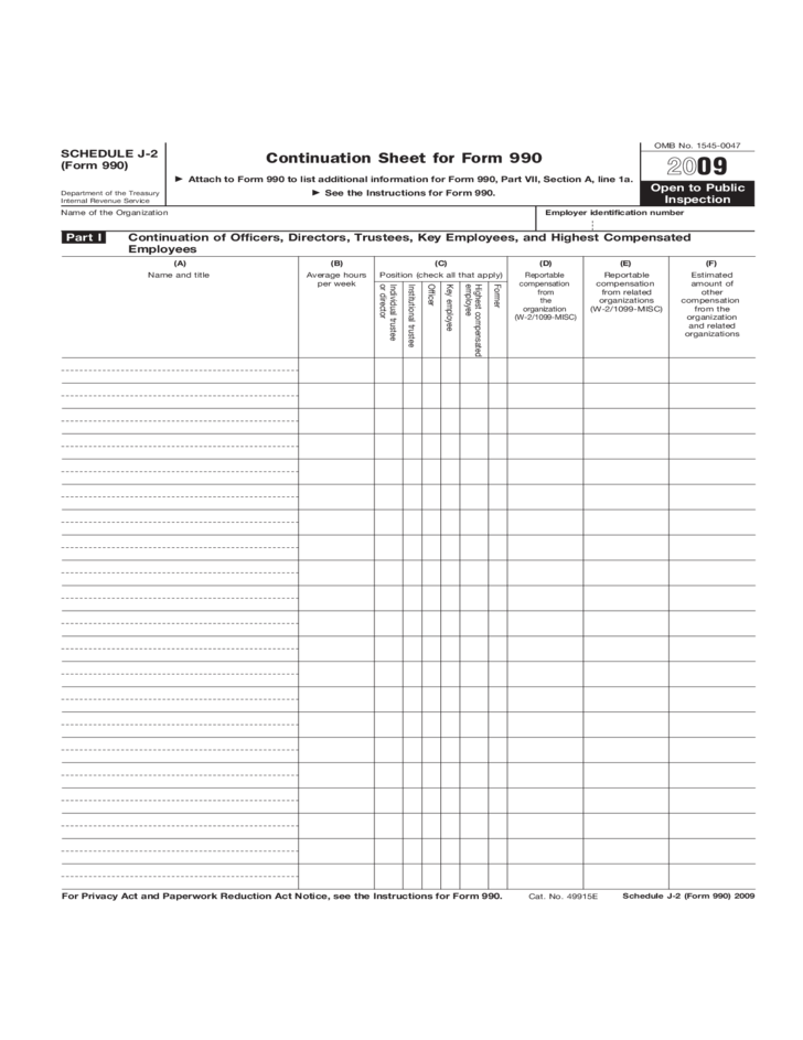 Form 990 Schedule J 2 Continuation Sheet 2009 Free Download