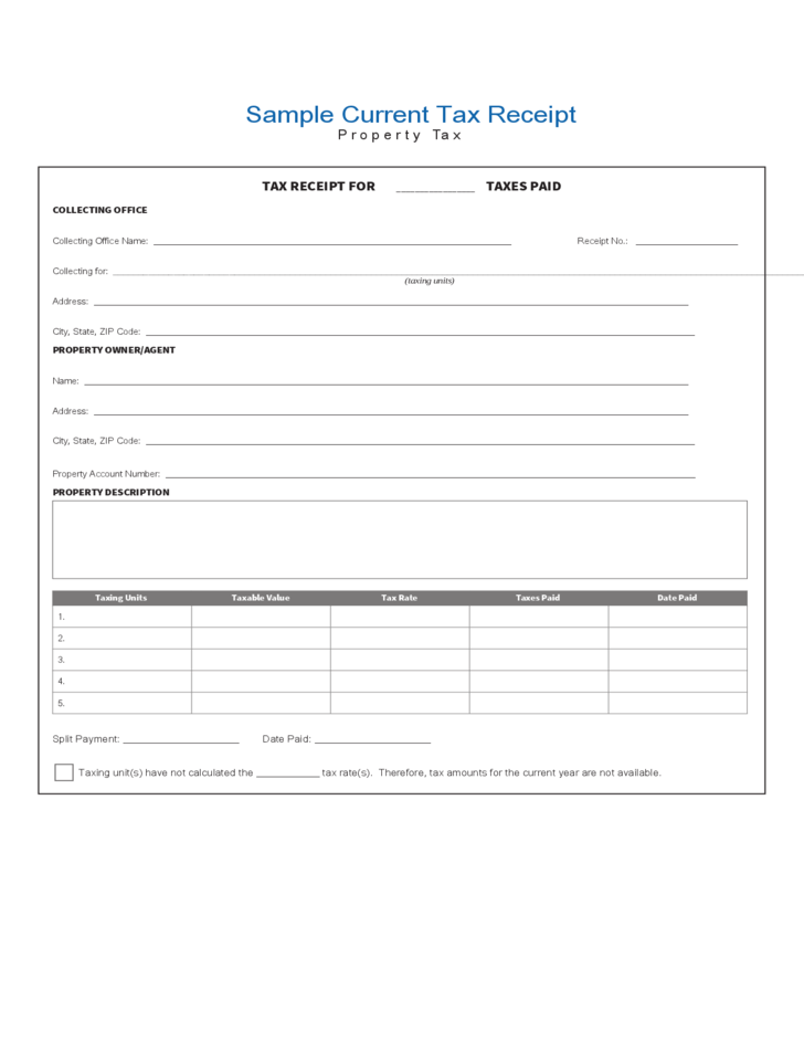sample current tax receipt free download