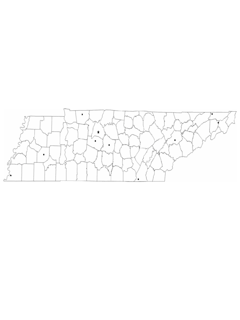 Blank Tennessee City Map