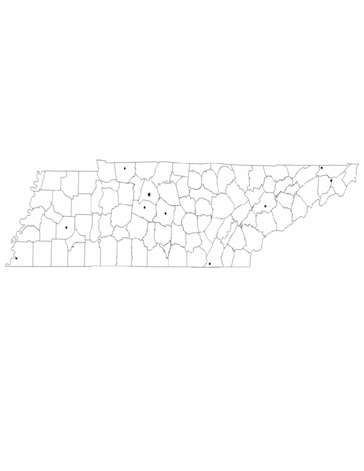 Blank Tennessee City Map Free Download