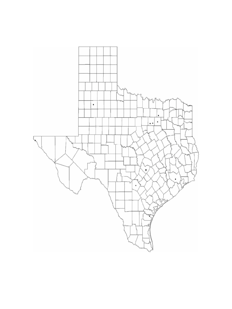 Blank Texas City Map Free Download