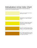 Urine Color Chart Sample Free Download