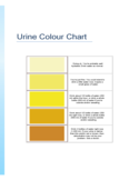 Urine Color Guide Chart Free Download