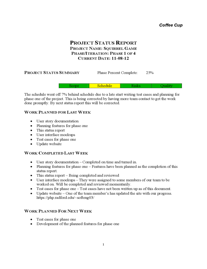 Weekly Report Writing – Project Report Writing Template